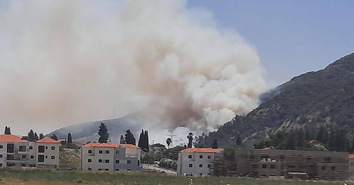 שריפת חורש בקרית חרושת