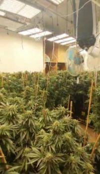 במקום נתפס ציוד רב המשמש לגידול וייצור סמים